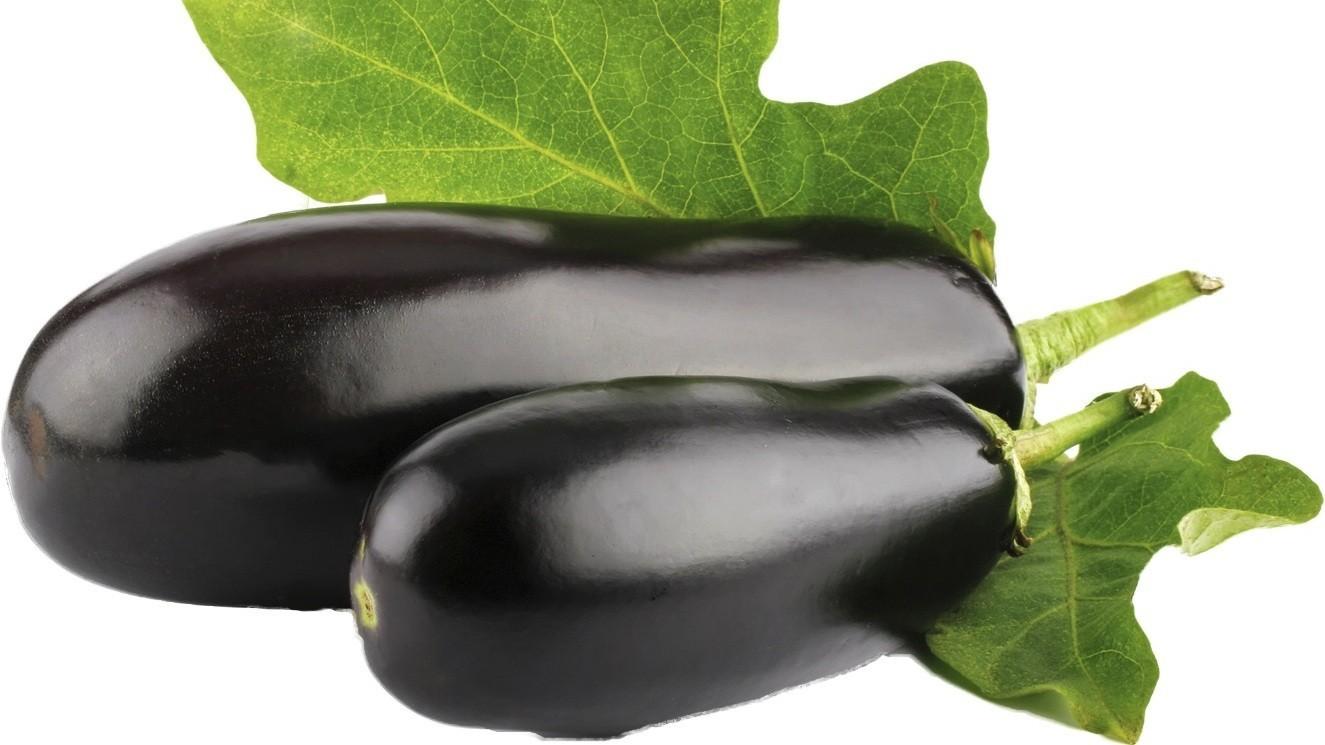 Каталог на семена овощных культур